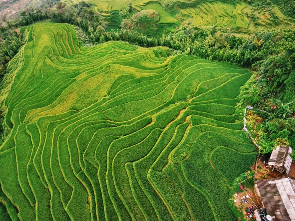 A Guide to Sapa Trekking and Hill-Tribe Homestay (Without Sapa Tours)